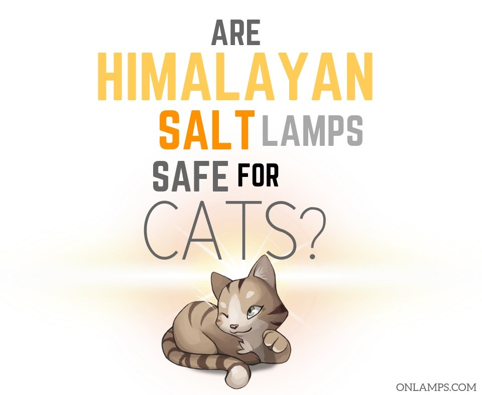 Are Himalayan Salt Lamps Safe for Cats