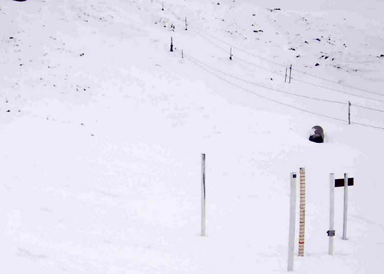 Απίστευτο: Χιονίζει στον Όλυμπο - Δείτε LIVE εικόνα