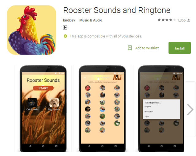 Rooster Sounds and Ringtone Android Apps