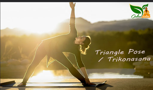 Triangle Pose or Trikonasana Image
