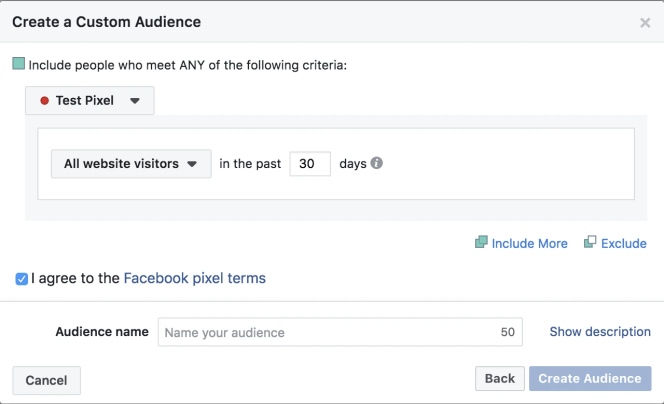 Custom Audience from your website