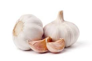 Medicnal uses of Garlic