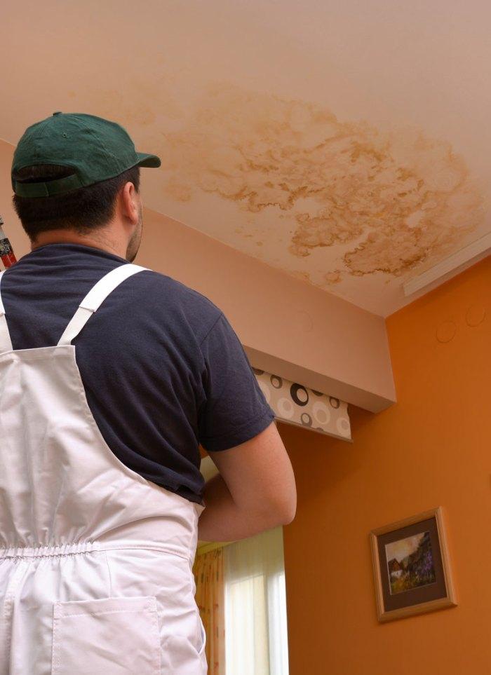 Repair of Rainwater Leakage In Buildings