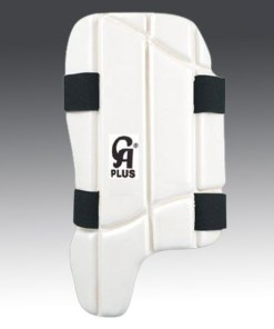 CA Plus Guards Online in USA