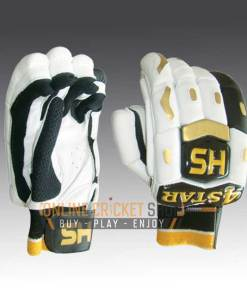 HS 4 Star Gloves Online in USA