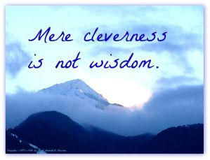 Quote: Cleverness vs. wisdom