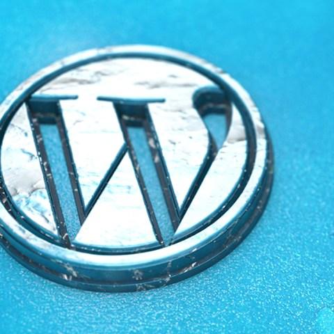 Intermediate WordPress Websites