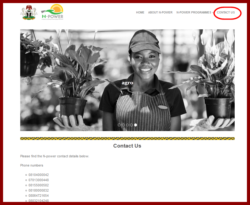 Npower.gov.ng Contact Info