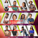 List Of Big Brother Naija House Mates