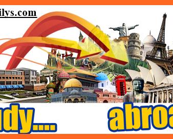 Logo Study Abroad From Nigeria