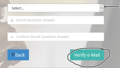 Logo: JAMB email verification form2