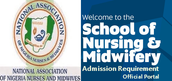 Approved School On Nursing And Midwifery In Kaduna State