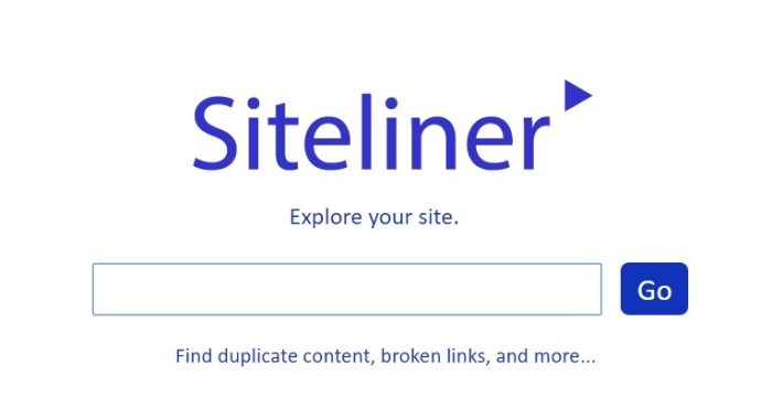 audit your site easily using Siteliner
