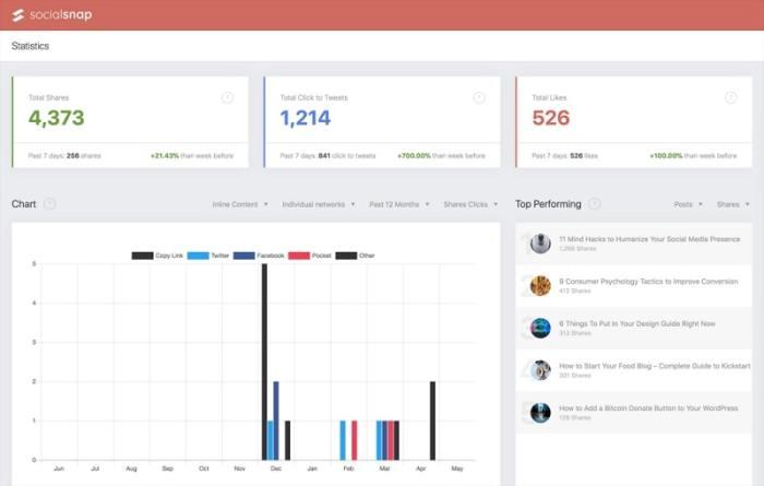 Social Snap Review - Analytics