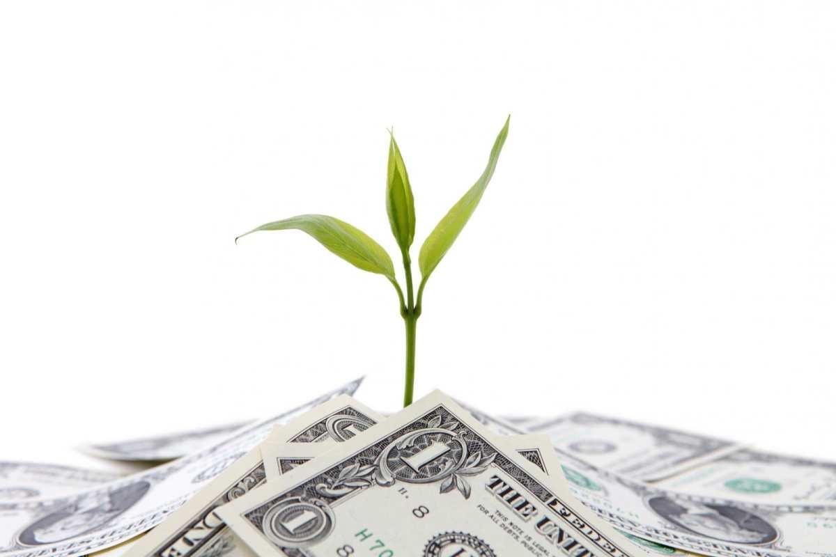 money blogging