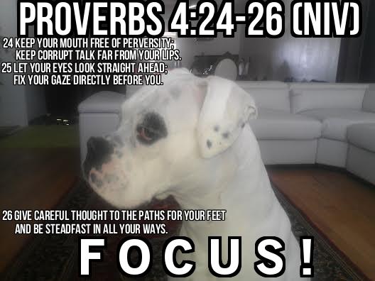 proverbs 4 focus