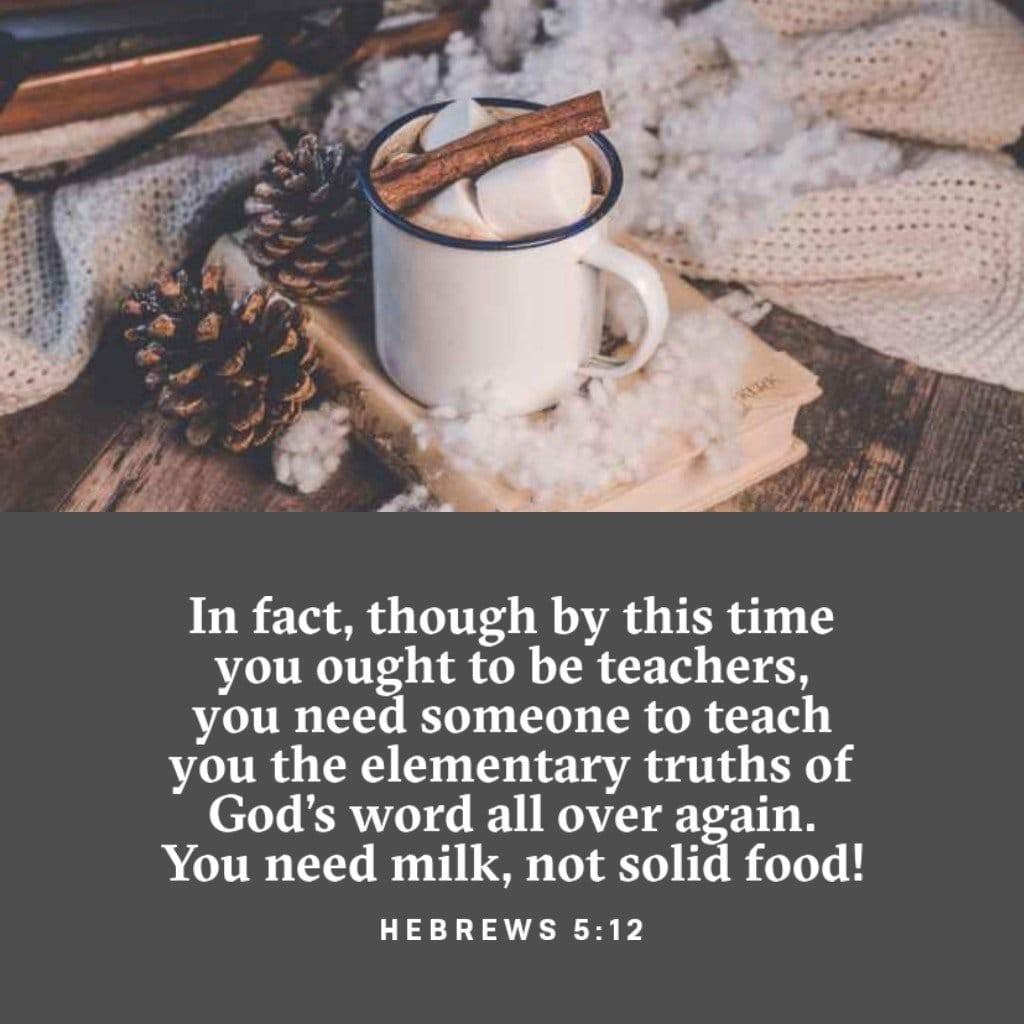 Hebrews 5:12-14 ESV