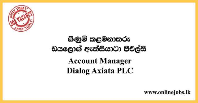 Account Manager : Dialog Vacancies 2020