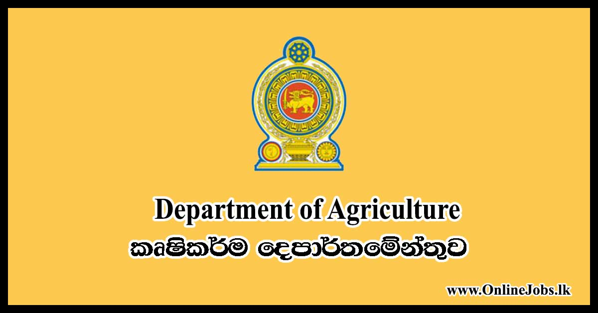 Government and Private Jobs Courses,Gazette,and Online Jobs
