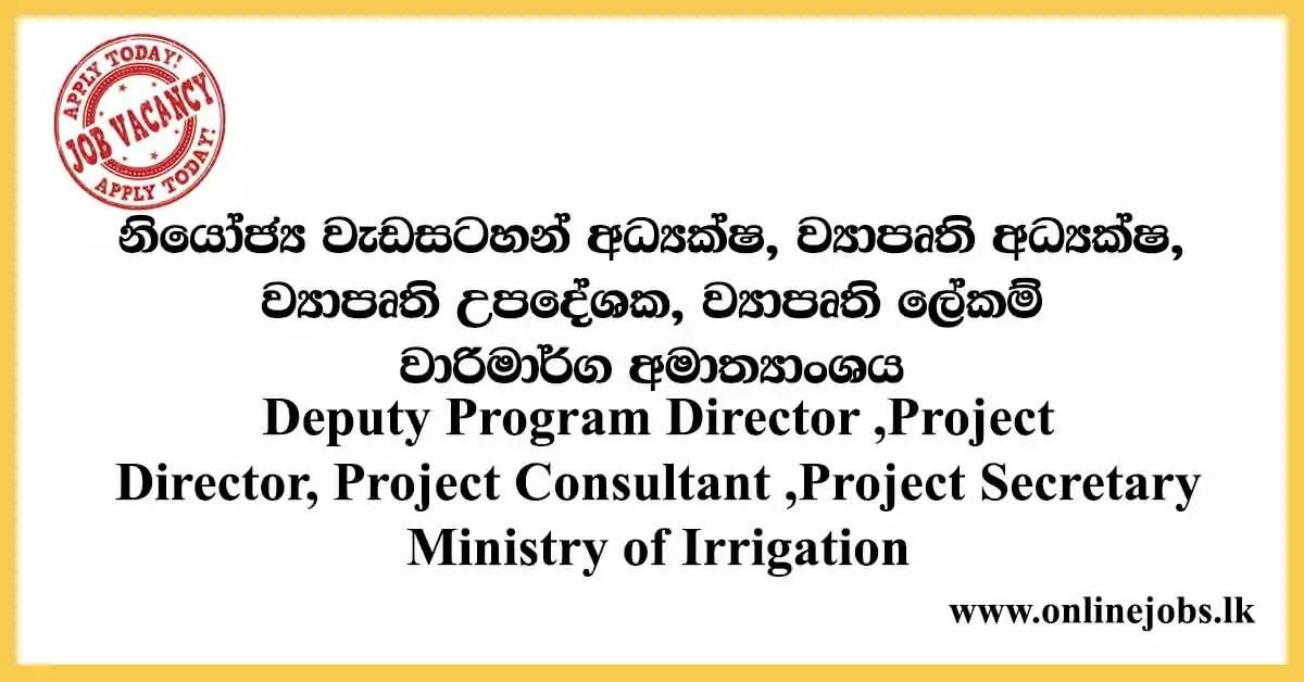 Deputy Program Director ,Project Director - Ministry of Irrigation Vacancies 2020