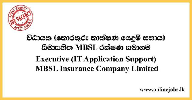 Executive (IT Application Support) MBSL Insurance Company Limited