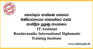IT Assistant - Bandaranaike International Diplomatic Training Institute