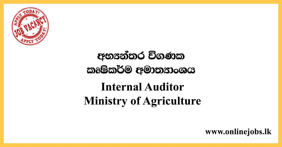 Internal Auditor - Ministry of Agriculture Vacancies 2020