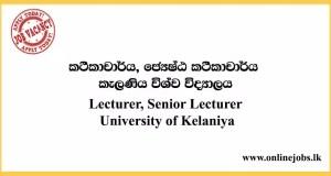 Lecturer, Senior Lecturer