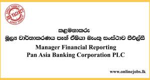 Manager - Financial Reporting Pan Asia Banking Corporation PLC