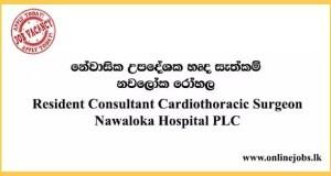 Resident Consultant Cardiothoracic Surgeon - Nawaloka Hospital PLC