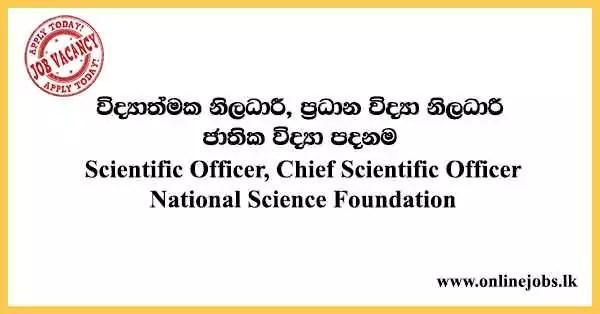National Science Foundation Vacancies