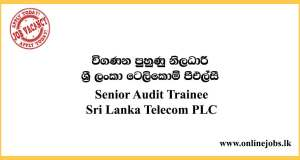 Senior Audit Trainee - Sri Lanka Telecom Vacancies 2020