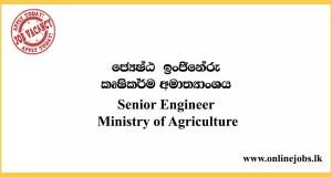 Senior Engineer - Ministry of Agriculture Job Vacancies