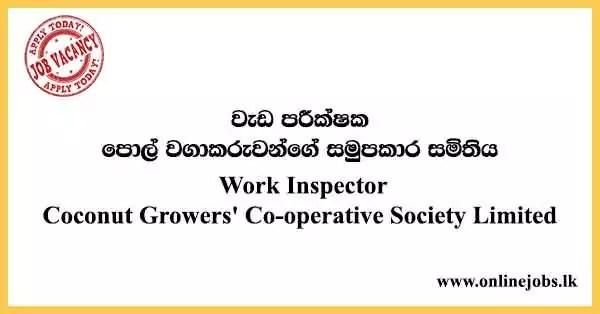 Society Limited Vacancies