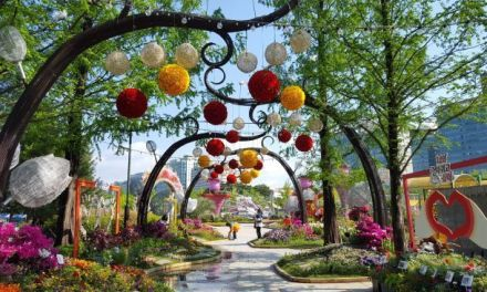 BEAUTIFUL FLOWERS SPREAD THROUGHOUT INTERNATIONAL HORTICULTURE GOYANG KOREA