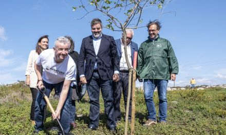 Ryanair Customers Donate €250,000 To Renature Monchique