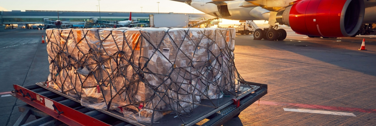 Air cargo demand: has it reached its peak or does it have room to grow?
