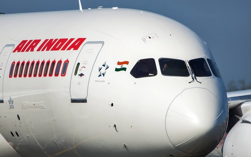 Ant swarm in business class prompts Air India flight delay