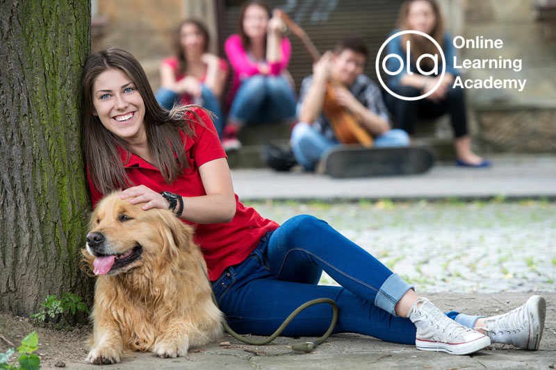 Canine Nutrition Diploma Course - Online Learning Academy