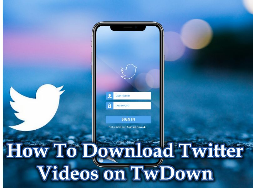 How To Download Twitter Videos on TwDown – Twitter Video Downloader