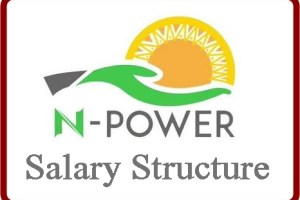 N-Power Salary Structure 2018