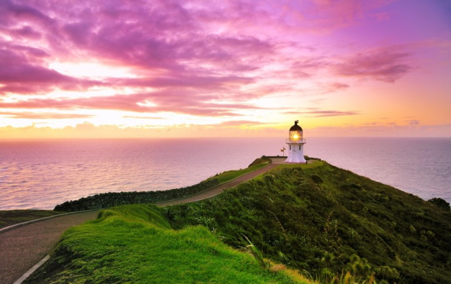 6 Things to do in New Zealand's Northland