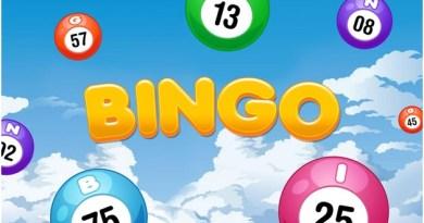 No Deposit Bingo Sites in NZ to play Bingo online