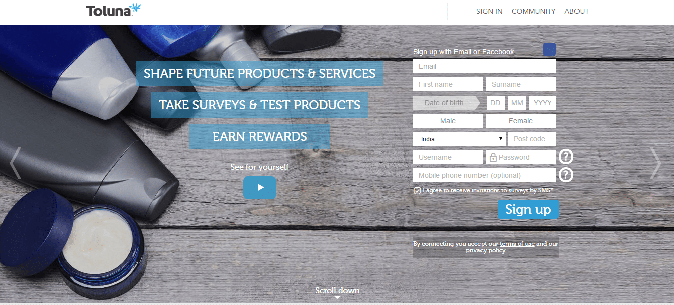 Toluna paid surveys