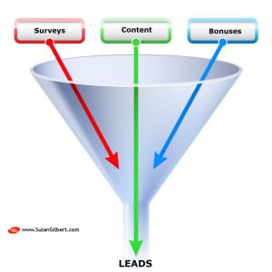 Lead Generation Using Content, Surveys and Bonuses