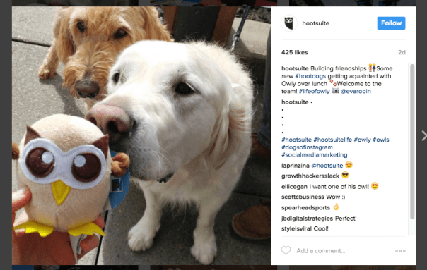 Here's What to Post on Instagram: 21 Top Post Ideas  and  Examples