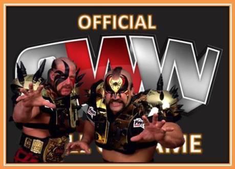 OWW HOF Warriors