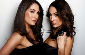 The-Bella-Twins