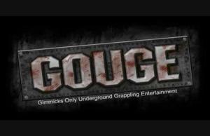 GOUGE-2