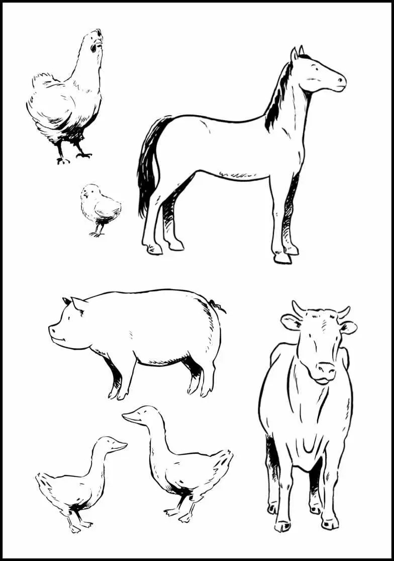 baby farm animal coloring pages free baby farm animal coloring pages